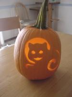 Pumpkin6_2